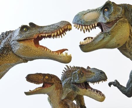 beenderige: Een Spinosaurus, Tyrannosaurus Rex, Velociraptor en de Allosaurus in een Dinosaur Group Stockfoto