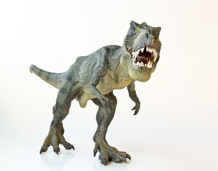 prehistoric animals: A Tyrannosaurus Rex Hunts Against a white Background