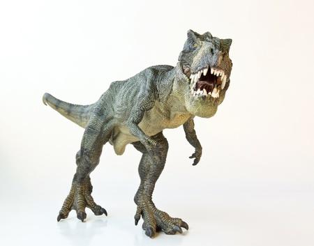 dinosauro: Un Tyrannosaurus Rex caccia su uno sfondo bianco