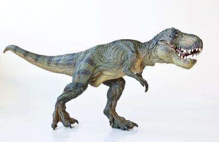 rex: A Tyrannosaurus Rex Hunts Against a White Background  Stock Photo