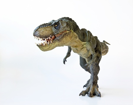 tiranosaurio rex: Un Tyrannosaurus Rex Hunt sobre un fondo blanco Foto de archivo