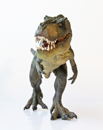 frightening: A Tyrannosaurus Rex Hunts Against a White Background  Stock Photo