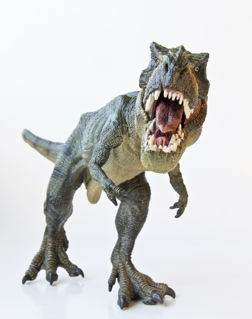 dinosaur: A Tyrannosaurus Rex Hunts Against a White Background  Stock Photo