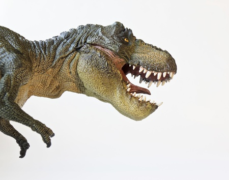 paleontology: A Tyrannosaurus Rex Hunts Against a White Background  Stock Photo