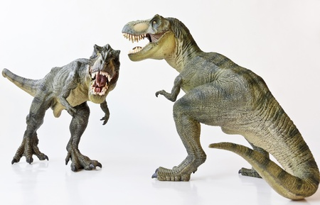 A Tyrannosaurus Rex Pair Face Off Against a White Background  photo