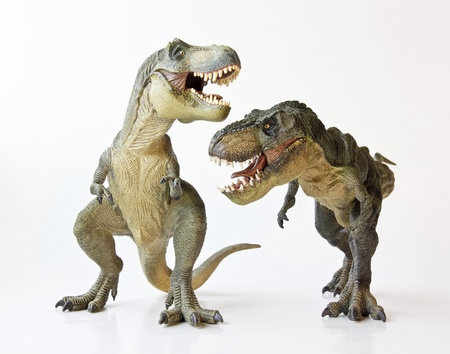 A Tyrannosaurus Rex Pair Face Off Against a White Background