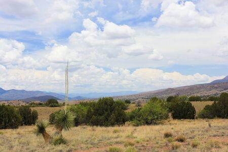leopold: A Scenic View from the Aldo Leopold Vista Picnic Area, New Mexico
