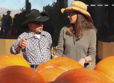 WILCOX, ARIZONA - OCTOBER 26: Apple Annie's Orchard on October 26, 2013, in Wilcox, Arizona. An old timer and a lady farmer discuss produce and pumpkins at Apple Annie's Orchard, very popular with locals and tourists alike. Editoriali