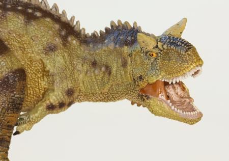 名前が意味する肉を食べる牛 Carnotaurus 恐竜を食べる肉 写真素材