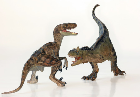 A Battle Between Carnotaurus and Velociraptor Dinosaurs Against White  Reklamní fotografie