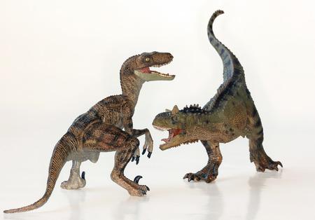 A Battle Between Carnotaurus and Velociraptor Dinosaurs Against White  Standard-Bild