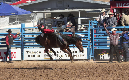 pima: Tucson, Arizona - February 15: The La Fiesta De Los Vaqueros Rodeo on February 15, 2014, in Tucson, Arizona. Bareback rider Colin Adams aboard bronco Sure Motion in the 2014 Tucson Rodeo.   Editorial