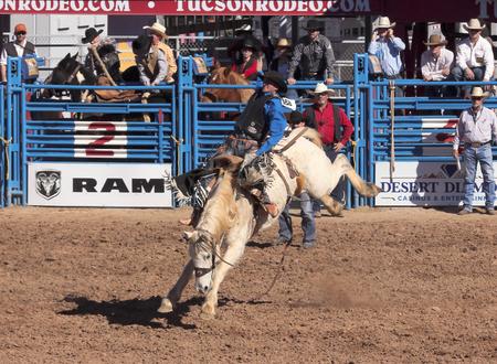 pima: Tucson, Arizona - February 15: The La Fiesta De Los Vaqueros Rodeo on February 15, 2014, in Tucson, Arizona. A Saddle Bronc rider in the 2014 Tucson Rodeo.