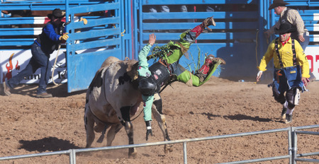 Tucson, Arizona - February 15: The La Fiesta De Los Vaqueros Rodeo on February 15, 2014, in Tucson, Arizona. A Bull Riding rider is thrown in the 2014 Tucson Rodeo.