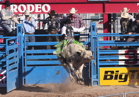 pima: Tucson, Arizona - February 15: The La Fiesta De Los Vaqueros Rodeo on February 15, 2014, in Tucson, Arizona. Bull Riding rider Ricky Aguiar in the 2014 Tucson Rodeo.  Editorial