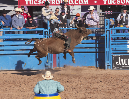 Tucson, Arizona - February 15: The La Fiesta De Los Vaqueros Rodeo on February 15, 2014, in Tucson, Arizona. Bull Riding rider Tustin Daye aboard Danny Boy in the 2014 Tucson Rodeo.