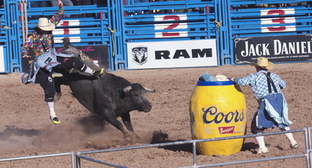 Tucson, Arizona - February 15: The La Fiesta De Los Vaqueros Rodeo on February 15, 2014, in Tucson, Arizona. A Bull Riding clown gets thrown in the 2014 Tucson Rodeo.