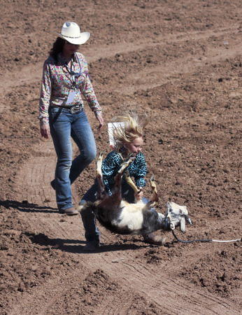 Tucson, Arizona - February 15: The La Fiesta De Los Vaqueros Rodeo on February 15, 2014, in Tucson, Arizona. A Goat Roper in the 2014 Tucson Junior Rodeo.