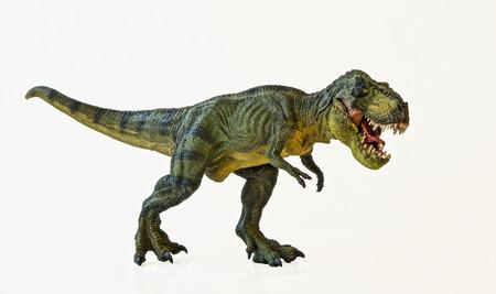 Ein Tyrannosaurus Rex Hunts vor einem weißen Hintergrund Standard-Bild - 29842313
