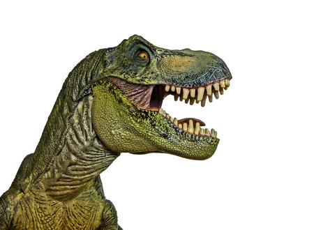 Een Tyrannosaurus Rex Hunts tegen een witte achtergrond Stockfoto