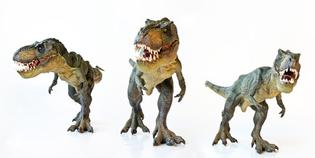 dinosauro: Un Tyrannosaurus Rex Trio Hunt insieme su uno sfondo bianco Archivio Fotografico