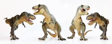 tiranosaurio rex: Un Tyrannosaurus Rex Foursome contra un fondo blanco Foto de archivo