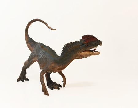 ridged: A Close Up Portrait of a Crested Dilophosaurus Dinosaur, Two Ridged Lizard Stock Photo