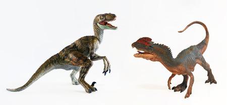 face off: A Dilophosaurus and a Velociraptor Dinosaur Face Off in Battle