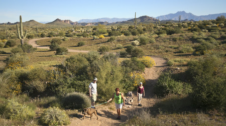 APACHE JUNCTION, ARIZONA - MARCH 15: Lost Ductchman State Park on March 15, 2015, near Apache Junction, Arizona. A Trail Leading into the Tonto National Forest and Superstition Mountain Wilderness in Lost Dutchman State Park, Arizona.