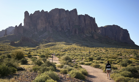 apache: APACHE JUNCTION, ARIZONA - MARCH 15: Lost Ductchman State Park on March 15, 2015, near Apache Junction, Arizona. A Trail Leading into the Tonto National Forest and Superstition Mountain Wilderness in Lost Dutchman State Park, Arizona.