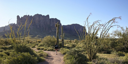 tonto national forest: A Trail Leading into the Tonto National Forest and Superstition Mountain Wilderness