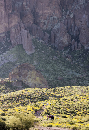 superstition: APACHE JUNCTION, ARIZONA - MARCH 15: Lost Ductchman State Park on March 15, 2015, near Apache Junction, Arizona. A Trail Leading into the Tonto National Forest and Superstition Mountain Wilderness in Lost Dutchman State Park, Arizona.