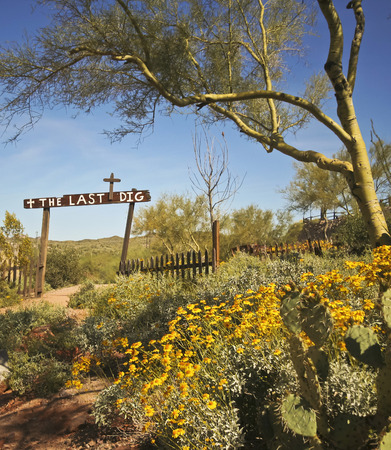 apache: APACHE JUNCTION, ARIZONA - MARCH 15: Goldfield Ghost Town on March 15, 2015, near Apache Junction, Arizona. The Last Dig Cemetery at Goldfield Ghost Town in Arizona with prickly pear, paloverde and yellow wildflowers. Editorial
