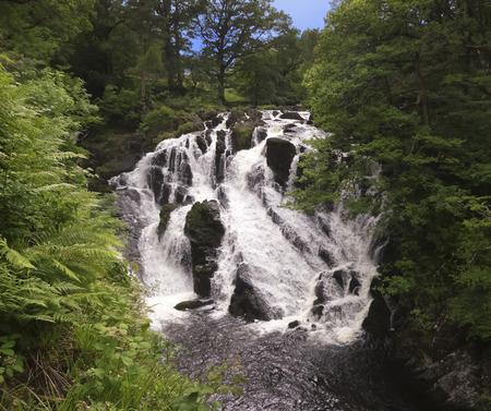 rushing: A Beautiful Rushing Waterfall Hidden in a Deep Green Forest