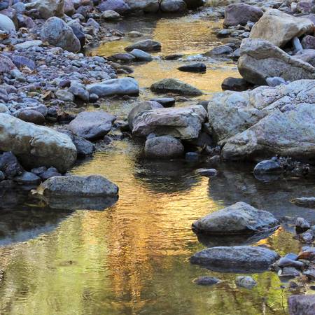reflects: A Gentle Creek Reflects the Greens and Golds of an Autumn Evening Stock Photo