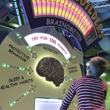 LAS VEGAS, NEVADA, DECEMBER 29. The Discovery Childrens Museum on December 29, 2016, in Las Vegas, Nevada. A Boy Learns About Brains at the Discovery Childrens Museum in Las Vegas, Nevada.