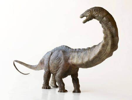 A Towering Apatosaurus Dinosaur Whose Name Means Deceptive Lizard