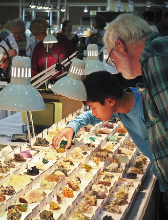 lapidary: TUCSON, ARIZONA, FEBRUARY 12. The Tucson Convention Center on February 12, 2017, in Tucson, Arizona. A Boy and His Grandfather Shop for Minerals at the Tucson Gem and Mineral Show in Tucson, Arizona.