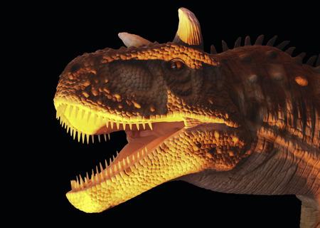 Carnotaurus 恐竜黄色と黒を食べる肉、名前を意味する肉を食べる牛