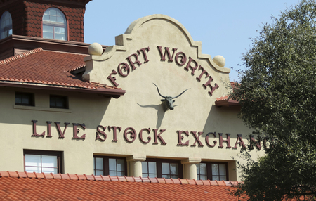 steers: FORT WORTH, TEXAS, MARCH 15. The Fort Worth Stockyards on March 15, 2017, in Fort Worth, Texas. A Fort Worth Livestock Exchange Building in the Fort Worth Stockyards historic district in Fort Worth, Texas