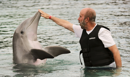 interacts: SCOTTSDALE, ARIZONA, MAY 14. Dolphinaris on May 14, 2017, in Scottsdale, Arizona. A Visitor Interacts with a Bottlenosed Dolphin at Dolphinaris in Scottsdale, Arizona. Editorial