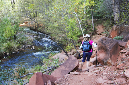 coconino national forest: A Woman Hikes the Templeton Trail Toward Famous Cathedral Rock Near Sedona, Arizona