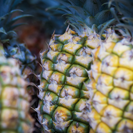 A Display of Pineapples at a Roadside Fruit Stand, Lahaina, West Maui, Hawaii