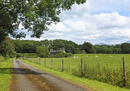 A Pastoral Welsh Landscape; Llanedwen, Anglesey, Wales, Great Britain, United Kingdom Standard-Bild