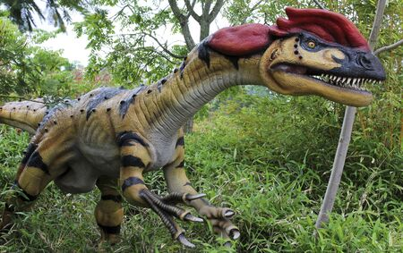 CHESTER, ENGLAND, JUNE 18. Chester Zoo on June 18, 2019, in Chester, England. A Close Up Portrait of a Crested Dilophosaurus Dinosaur, Two Ridged Lizard, Chester Zoo, Cheshire, England, Great Britain, United Kingdom