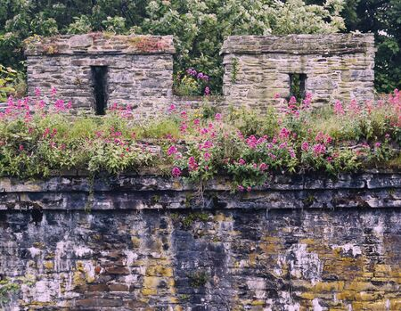 A Detail Shot of the Ancient and Beautiful City Wall, Conwy, Wales, Great Britain, United Kingdom. Standard-Bild