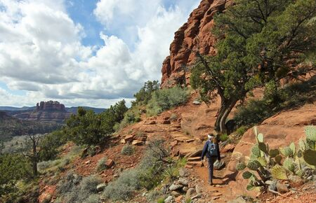 A Woman Hikes the Airport Loop Trail, Sedona, Arizona, USA, Famous Cathedral Rock on the Left Standard-Bild