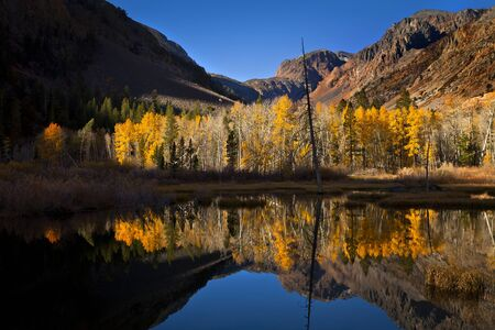 Lundy Canyon in Autumn with fall leaves on the trees reflecting in a beautiful pond. Part of the Sierra Nevada mountains near Lee Vining and Mono Lake, CA