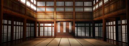 3d rendered illustration of karate dojo background. Karate school is out of focus to be used as a photographic backdrop.