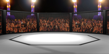 arena: 3D Rendered Illustration of an MMA, mixed martial arts, fighting cage arena.